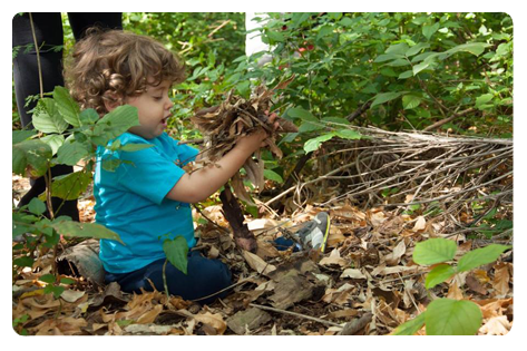 Descrição da imagem: Criança brinca pequena com folhas secas de árvore.